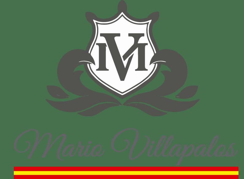 Mario Villapalos
